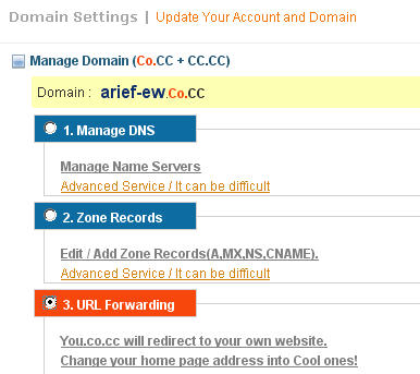 Domain settings – Manage Domain co.cc