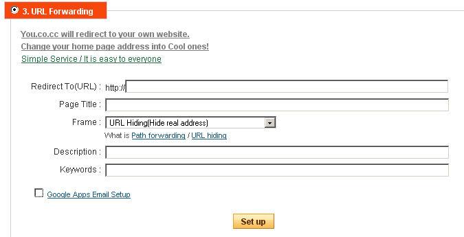 Domain settings – URL Forwarding